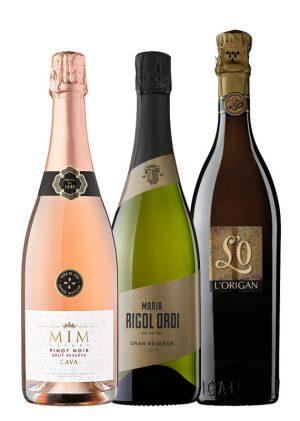 Lote Vinos Espumosos para Sant Esteve