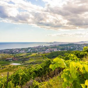 Enoturismo Winetourism Alella by elvinet