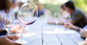 elvi.net apoya el manifiesto en defensa del sector del vino en tiempos del coronavirus