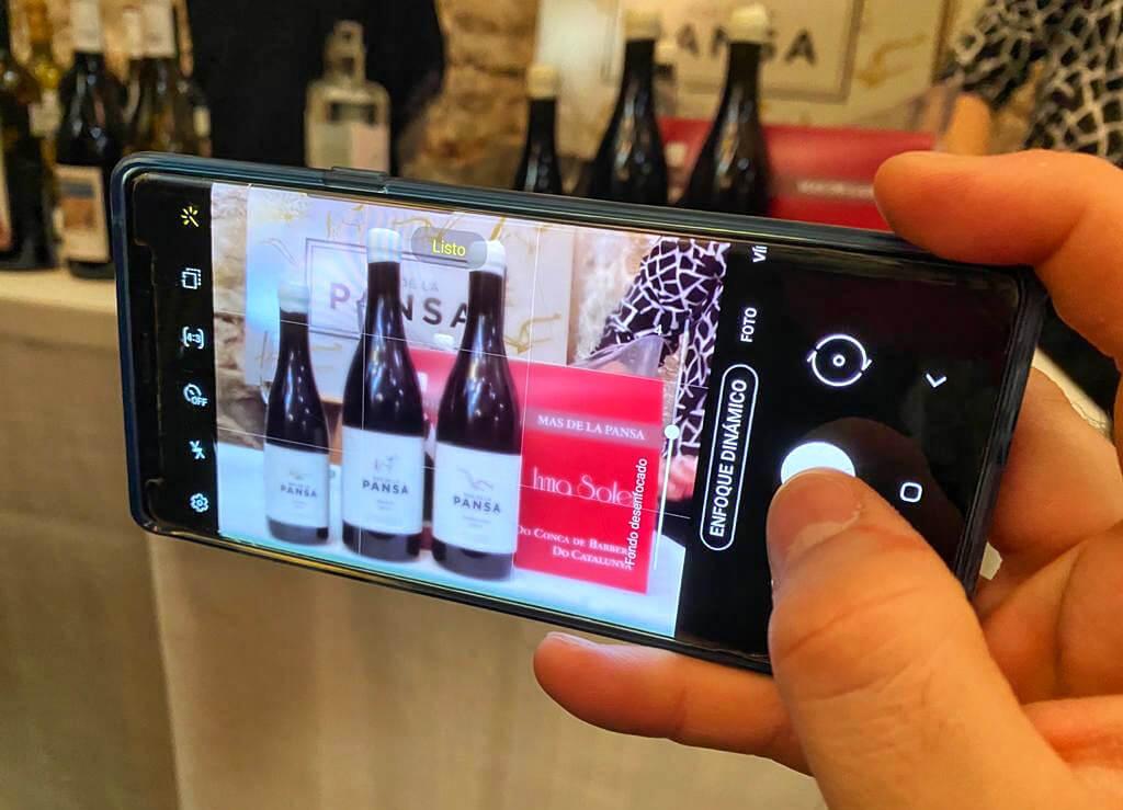 Servicios para bodegas | Promoción de vinos